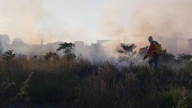 Photo of Prefeitura alerta para aumento de queimadas em Conquista