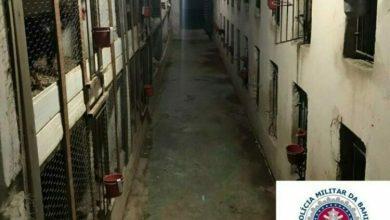 Photo of Região: Polícia encerra aglomeração e fecha rinha de galo que funcionava em fundo de bar