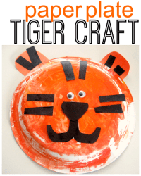 Tiger Craft - No Time For Flash Cards