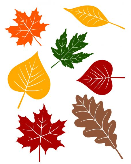 5 fall circle time lessons