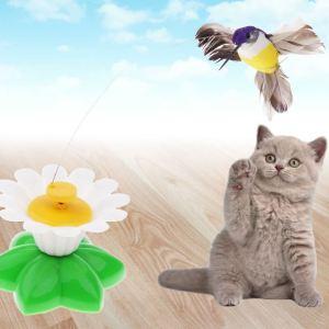 Hračka pro kočky – létající kolibřík