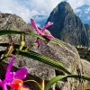 Machu Picchu es la portada de abril de la revista National Geographic Traveler