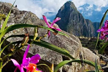 Vraem: Lanzan ruta turística que une Satipo con Machu Picchu