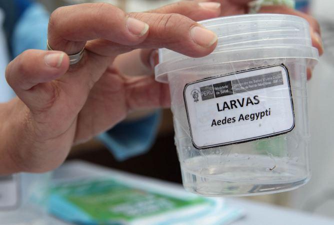 Piura: Diresa informó que hay 159 casos confirmados de dengue en siete distritos