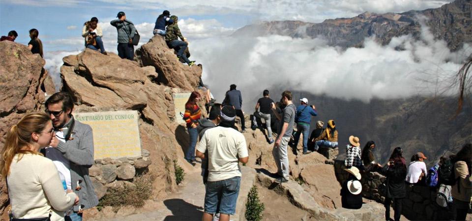 Agencias de turismo dejaron de prestar el servicio hacia el cañón del Colca por huelga en la zona