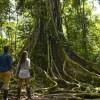"Loreto: nueva ruta turística ""Aventura en el Allpahuayo Mishana"""