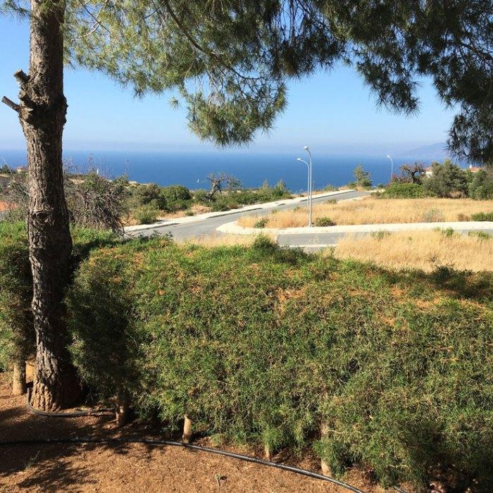 Ausblick Zypern