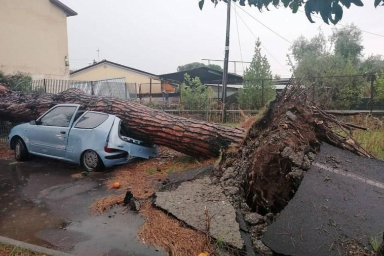 Massa Carrara, violento nubifragio con forti raffiche di vento: alberi caduti e danni ai palazzi
