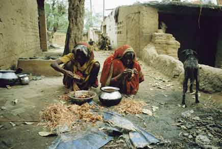 Social change in India caste system