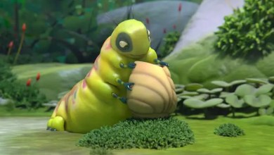 Photo of Cortometraje de Animación: Sweet Cocoon