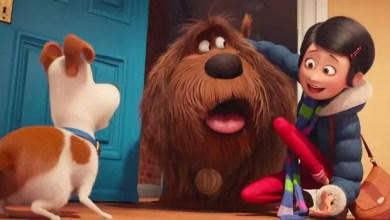 Photo of Nuevo Trailer: La Vida Secreta de Las Mascotas