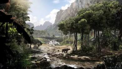 Photo of El Arte Conceptual: El Libro de La Selva