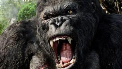 Photo of Nuevo Trailer: Kong Skull Island ¡Brutal!