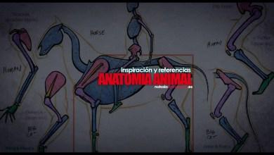 Anatomía animal para dibujo ilustración y animación - Inspiración y Referencias
