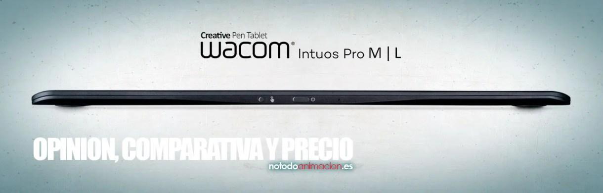 intuos pro M L review precio