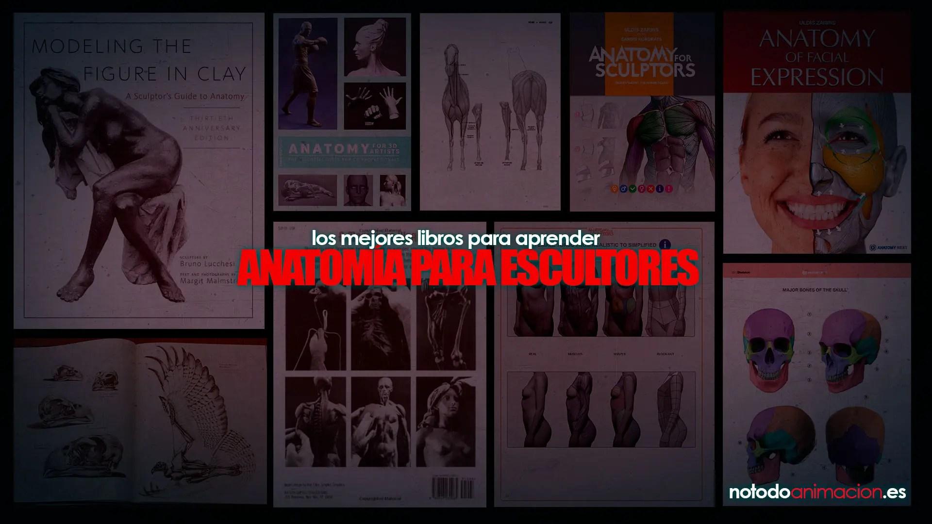 Los 7 mejores Libros de Anatomía para Escultores