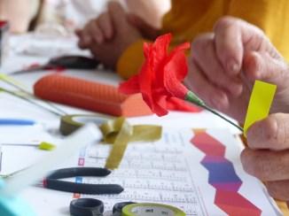 Loix - Atelier bleuets et coquelicots - 18 juin 2018