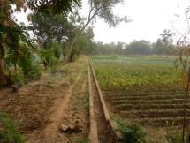Système d'irrigation dans les jardins de Nanoro