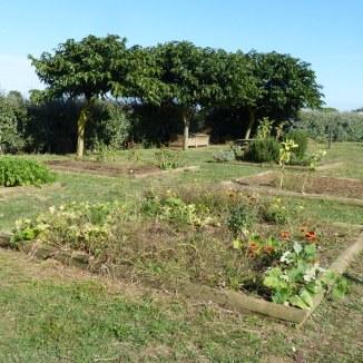 Loix - Jardin de l'école - Octobre 2013
