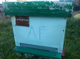 Une ruche déjà parrainée à la miellerie de Loix