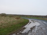 P1060835 - Marre de la pluie