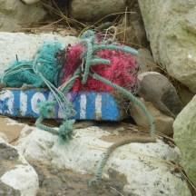 Détritus sur la plage d'Ars-en-Ré