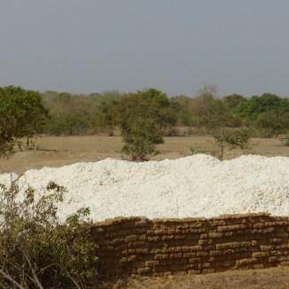 Burkina Faso - Coton après récolte