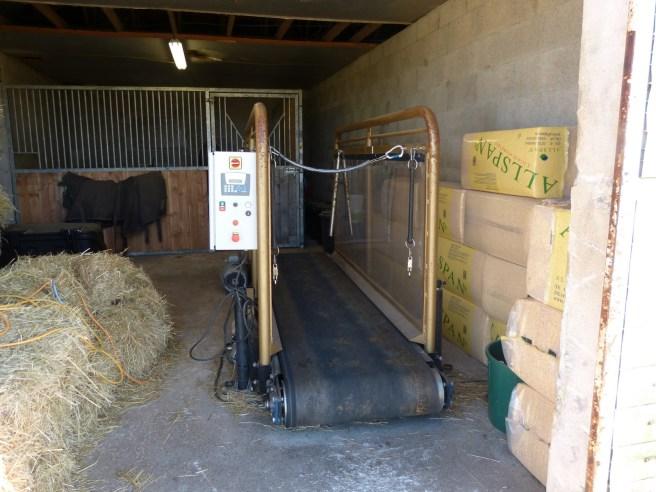 Ecurie Ré L - Loix - Tapis d'entraînement pour les chevaux
