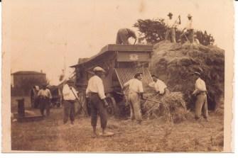 Carte postale ancienne de l'île de Ré