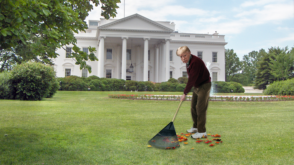 Donald Trump Models Wildfire Prevention by Raking White House Lawn