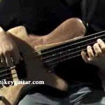 Fretted or fretless? Make it a convertible
