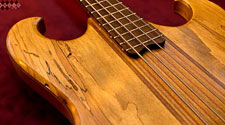 Ansir bass details