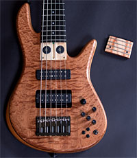 Fodera Mike Pope Signature Viceroy Bass - frets