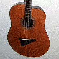 Bass of the Week: Burrell Fat-Boy Acoustic Bass Guitar