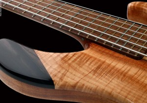 Basone 6-String Bass Guitar - fretboard closeup