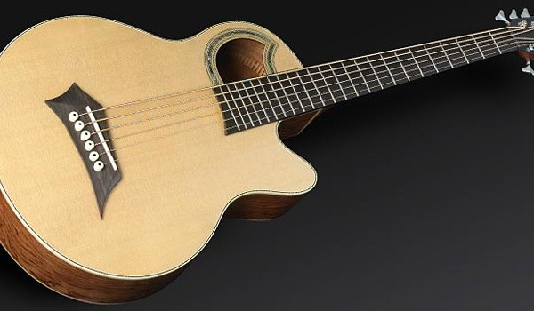 Warwick Introduces 6-String Rockbass Alien Deluxe Acoustic Bass Guitar
