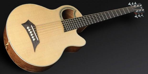 Warwick Rockbass Alien Deluxe 6-string Acoustic Bass Guitar
