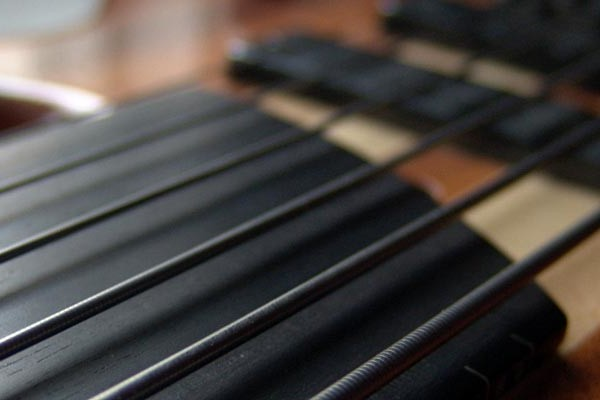 A Guide to Making the Switch Fretless Bass