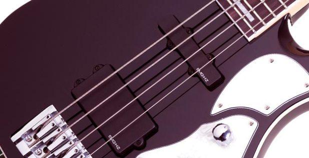 Schecter Stargazer-4 Bass pickups