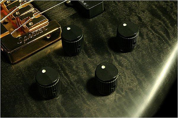 Spector NS-2 Bass - controls