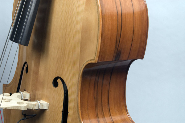 Bass of the Week: David Gage Czech-Ease Double Bass