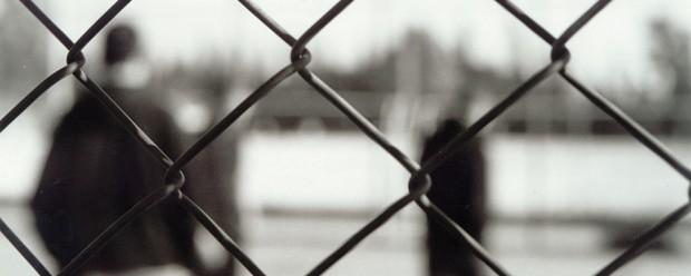 chain-fence-crop