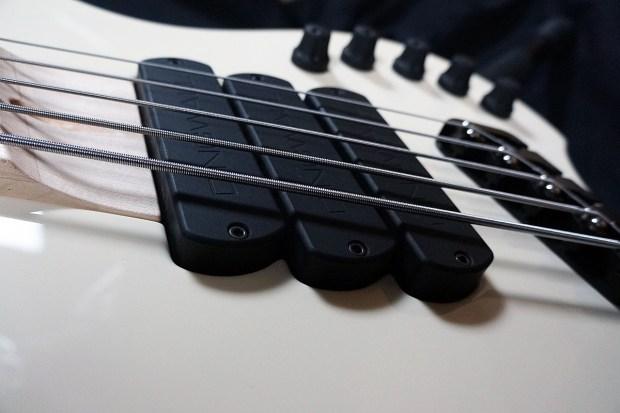 Dingwall Guitars Alberto Rigoni AR5 Bass pickups