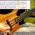 Sebastian Sanhueza: 50 Bass Intros