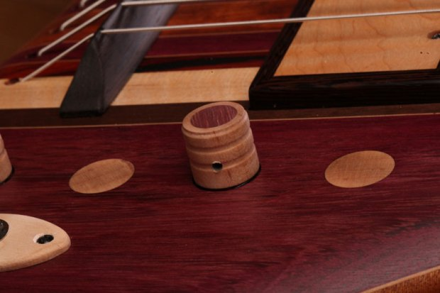 Zoov Guitars Classic 5 Bass - control