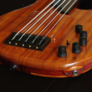 Bass of the Week: HJC Customs Alchemy Fretless 5