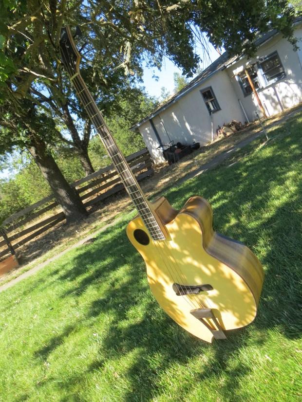 Jack Casady's Ribbecke Guitars