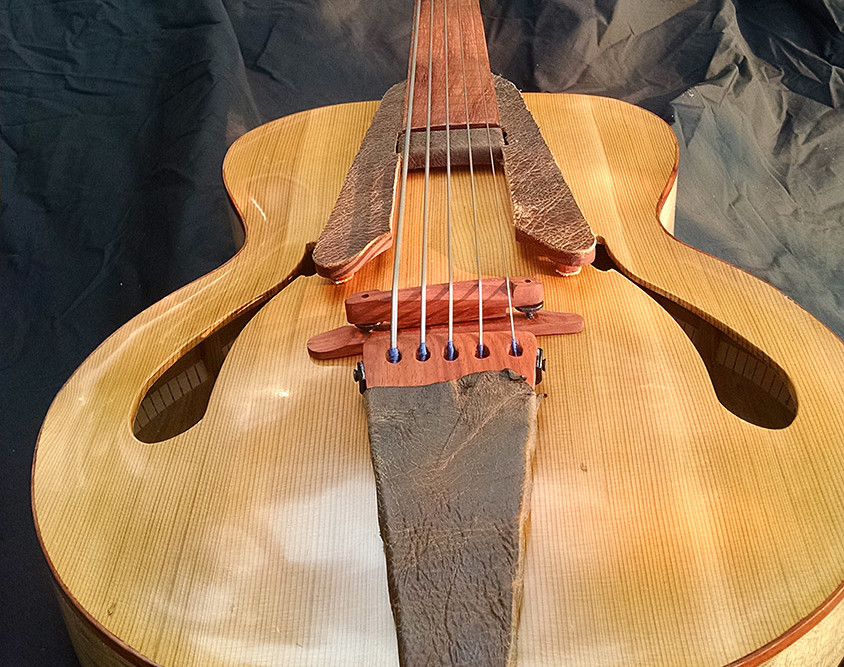 bass of the week whitt guitars 5 string fretless archtop acoustic bass no treble. Black Bedroom Furniture Sets. Home Design Ideas