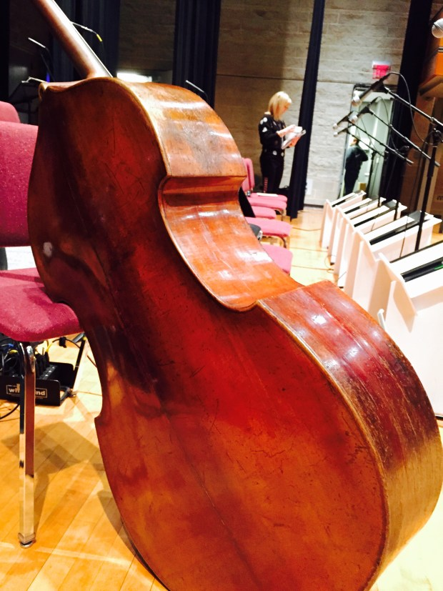 John Worster Arvell Shaw Bohemian Double Bass back