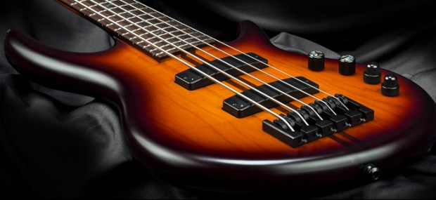 Kiesel Carvin Guitars Icon 2.0 5-string Bass Body Perspective